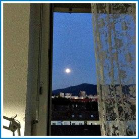 gah_window (1)