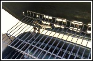 DCSTULTZ-lizard-grill