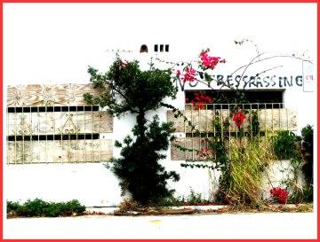 trespass_randy_mazie-1