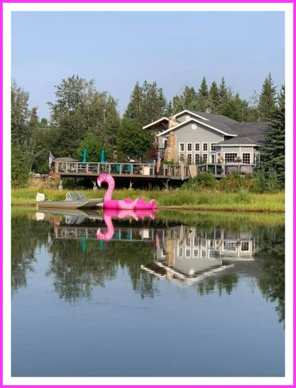 flamingo-lake-p-allman_58
