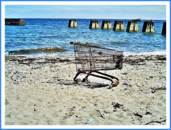 shopping-cart_33
