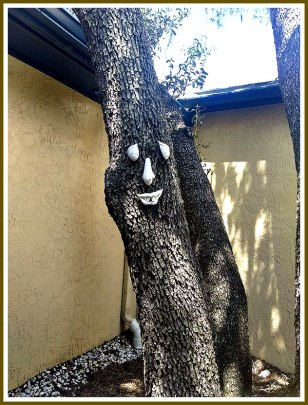 dcstultz-tree-face_64