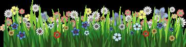 pngfind.com-grasses-png-365767